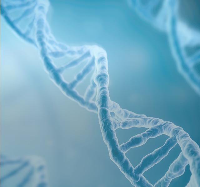 Nucleic acid 核酸